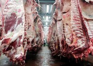 carne110210