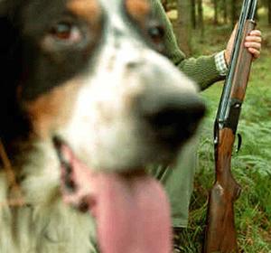 perro-mata-hombre-con-escopeta