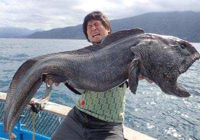 pez mutante 2
