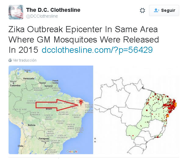 zika brasil epidemia