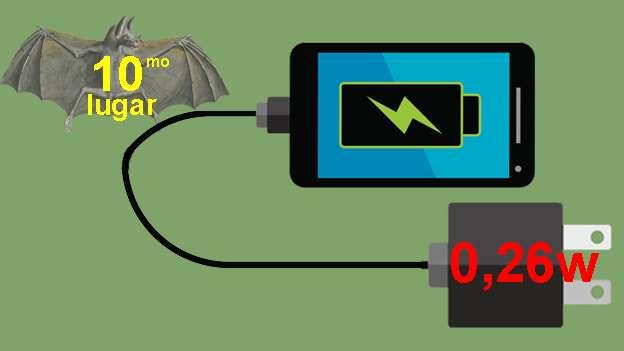 Cargador de teléfono celular,El menor de los consumidores.  Pero hay necesidad de dejarlo conectado cuando no está cargando el teléfono