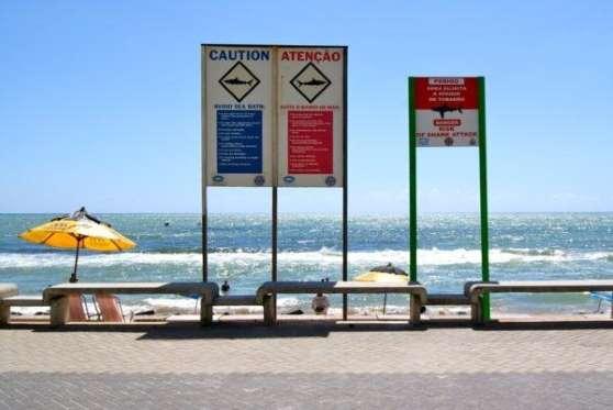 PRaia Boa Virgem El nombre no engaña. Esta playa brasileña es una de las más populares de Recife. Su barrera de coral y sus aguas cristalinas, hacen que bañarse en ella sea toda una experiencia. Pero claro, el agua transparente también te permite ver venir los tiburones a por tu sabroso cuerpo. Aunque los 60 ataques registrados en lo que va de siglo, tienen poco que ver con los se Smyrna Beach, no quita para que optemos por otra playa, si es que vamos a ir a Recife.