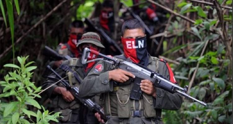 Forex paz ejército binario