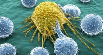 virus de la gripe cura el cáncer