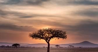 Viajar a África con aerolíneas colombianas