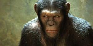 trailer el planeta de los simios 2017