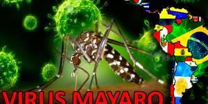 fiebre mayaro