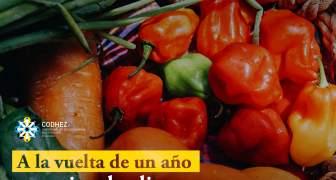 En un año precios de alimentos en Maracaibo aumentan 1634 por ciento Boletín Octubre 2020