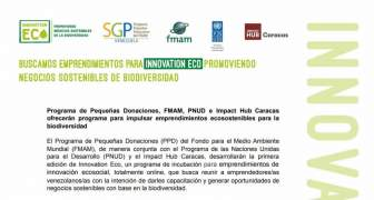 PNUD e Impact Hub Caracas ofrecerán programa para impulsar emprendimientos