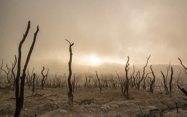 EFECTOS DEL CAMBIO CLIMATICO EN EEUU